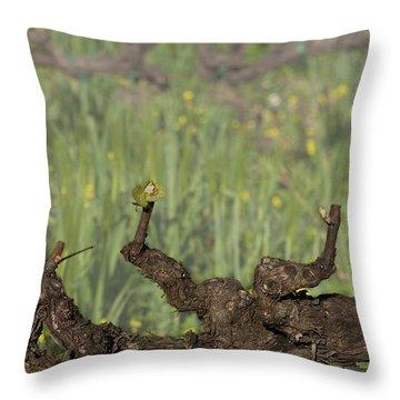 Throw Pillow featuring the photograph Budbreak In Carneros by Carol Lynn Coronios