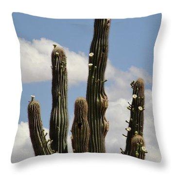 Budding Saguaro Cactus Babies Throw Pillow