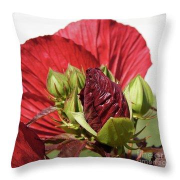 Budding Beauty Throw Pillow