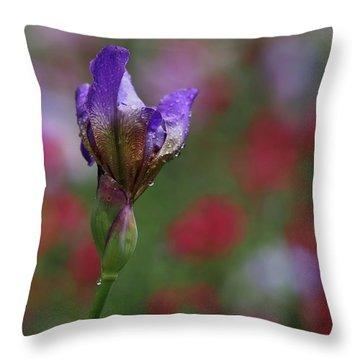 Budding Purple Iris Throw Pillow