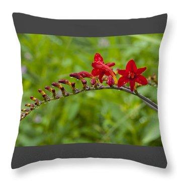 Budding Red Throw Pillow