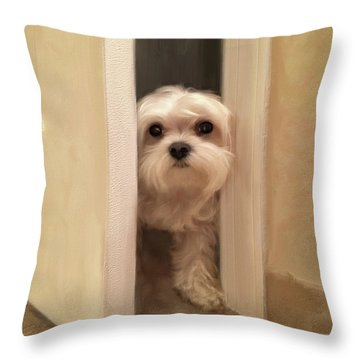 Throw Pillow featuring the photograph Hello by Lois Bryan