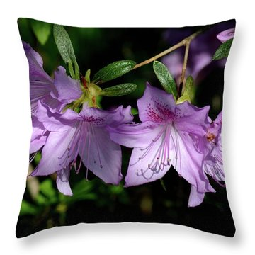Throw Pillow featuring the photograph Buds And Blooms by Angie Tirado