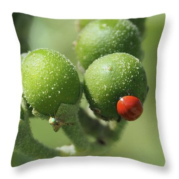 Buds And Bugs Throw Pillow