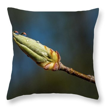 Throw Pillow featuring the photograph Buds With Water Drops by Paul Freidlund