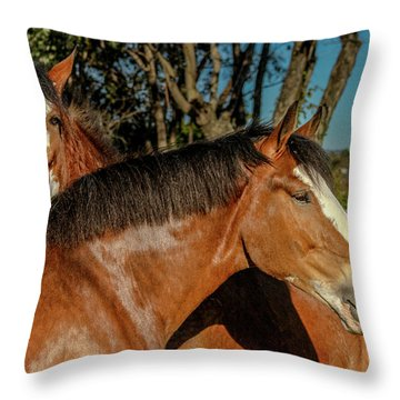 Throw Pillow featuring the photograph Budweiser Clydesdales  by Bill Gallagher