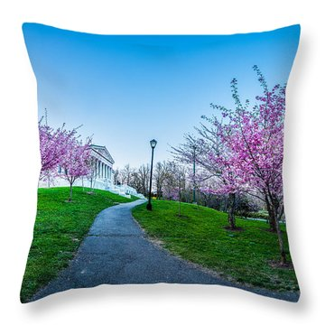 Buffalo Cherry Blossoms 1 Throw Pillow