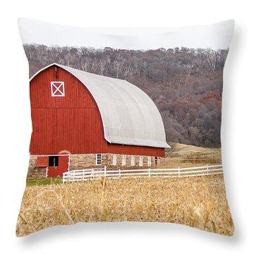 Throw Pillow featuring the photograph Buffalo County Barn by Dan Traun