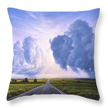 Buffalo Crossing Throw Pillow by Jerry LoFaro