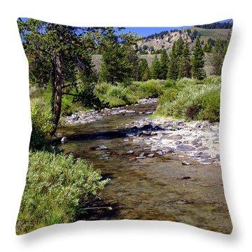 Buffalo Fork Throw Pillow by Marty Koch