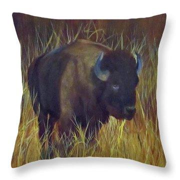 Buffalo Grazing Throw Pillow