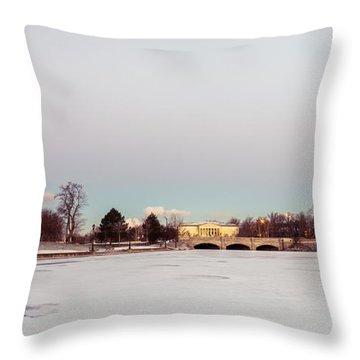 Buffalo History Museum Across Hoyt Lake Throw Pillow by Chris Bordeleau