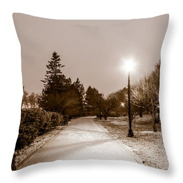 Throw Pillow featuring the photograph Buffalo History Museum Winter Twilight  by Chris Bordeleau
