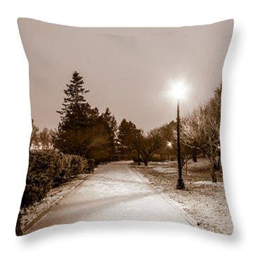 Buffalo History Museum Winter Twilight  Throw Pillow by Chris Bordeleau