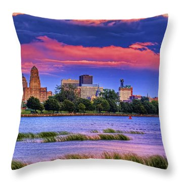 Throw Pillow featuring the photograph Buffalo In Pastels by Don Nieman