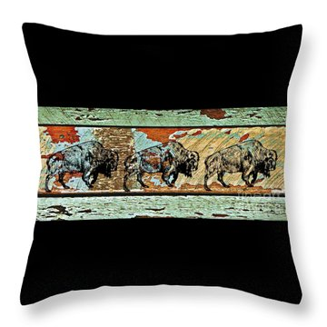 Throw Pillow featuring the photograph Buffalo Trail 2 by Larry Campbell