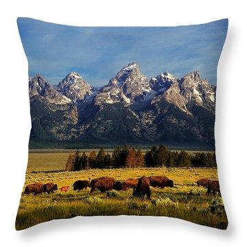 Buffalo Under Tetons Throw Pillow