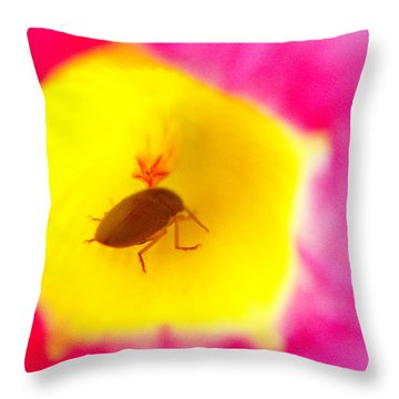 Bug In Pink And Yellow Flower  Throw Pillow by Ben and Raisa Gertsberg