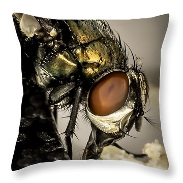Throw Pillow featuring the photograph Bug On A Bug by Chris Cousins