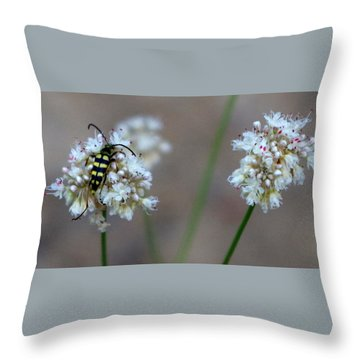 Bug On Flower Throw Pillow