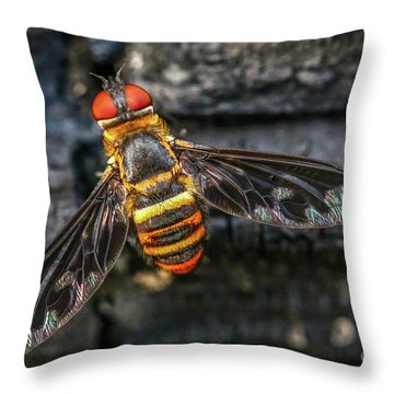 Bug With Red Eyes Throw Pillow