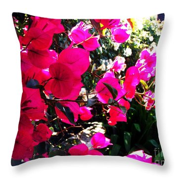 Throw Pillow featuring the photograph Bugambilia by Vanessa Palomino