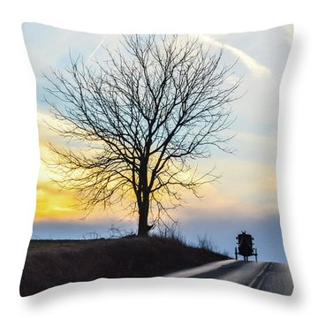 Buggy On The Crest Throw Pillow
