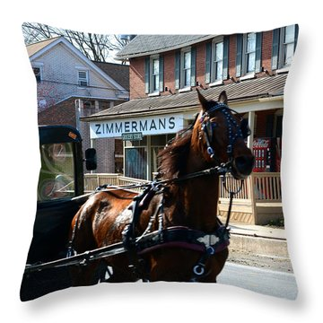Buggy Whooshes Past Zimmerman's Throw Pillow