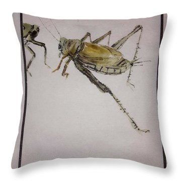 Bugs And Blooms Album Throw Pillow by Debbi Saccomanno Chan