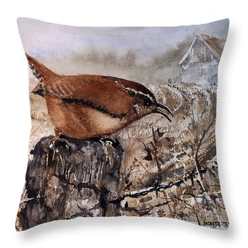 Bugs And Spiders Throw Pillow by Monte Toon