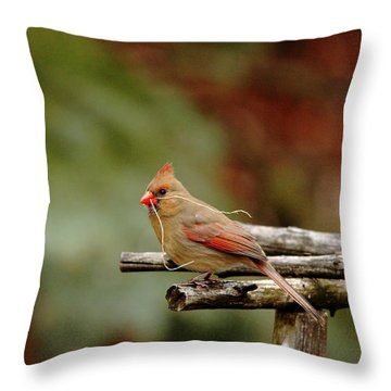 Building A Home Throw Pillow by Debbie Oppermann