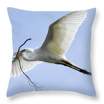 Building A Home Throw Pillow by Gary Wightman