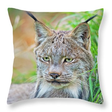 Throw Pillow featuring the photograph Built In Hearing Aid.. by Nina Stavlund