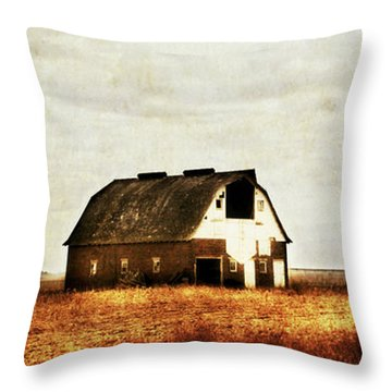 Throw Pillow featuring the photograph Built To Last by Julie Hamilton