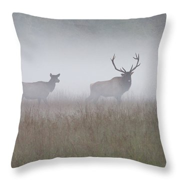 Bull And Cow Elk In Fog - September 30 2016 Throw Pillow