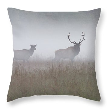 Bull And Cow Elk In Fog - September 30 2016 Throw Pillow