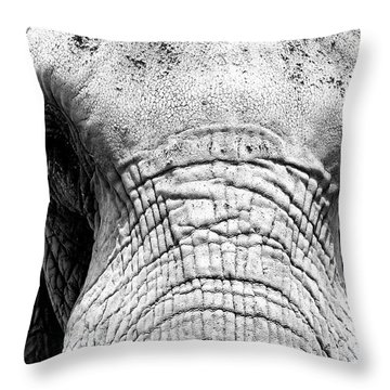 Bull Elephant Throw Pillow