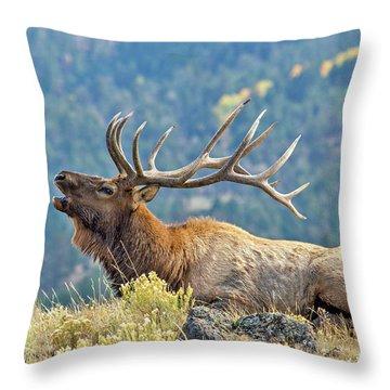 Bull Elk Bugling Throw Pillow