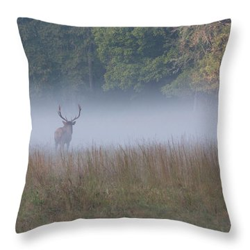 Bull Elk Disappearing In Fog - September 30 2016 Throw Pillow