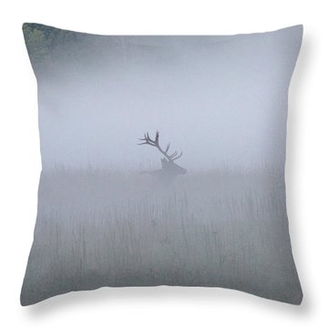 Bull Elk In Fog - September 30, 2016 Throw Pillow