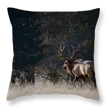 Throw Pillow featuring the photograph Bull Elk In Frost by Michael Dougherty