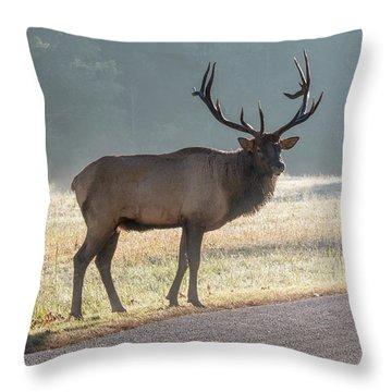 Bull Elk Watching Throw Pillow