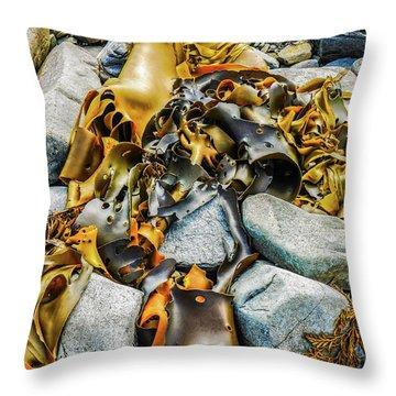 Bull Kelp On Blue Rocks Throw Pillow