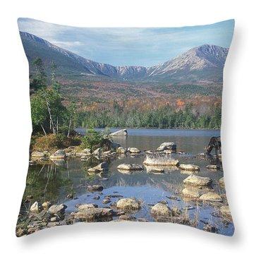 Bull Moose Feeding In Sandy Stream Pond Throw Pillow