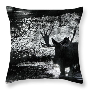 Bull Moose Shadow Throw Pillow
