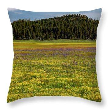Bull Prairie Throw Pillow by Leland D Howard