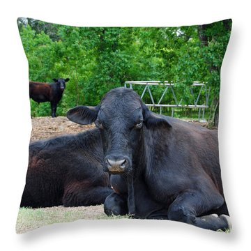 Bull Relaxing Throw Pillow