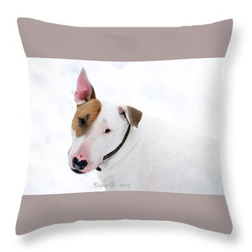 Bull Terrier Throw Pillow by Diane Giurco