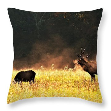 Bull With His Girl Throw Pillow