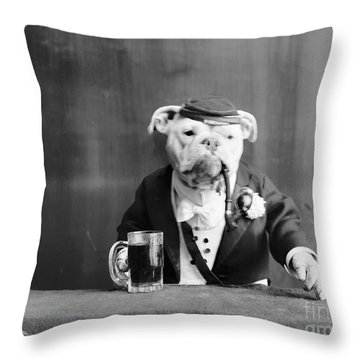 Bulldog, C1905 Throw Pillow